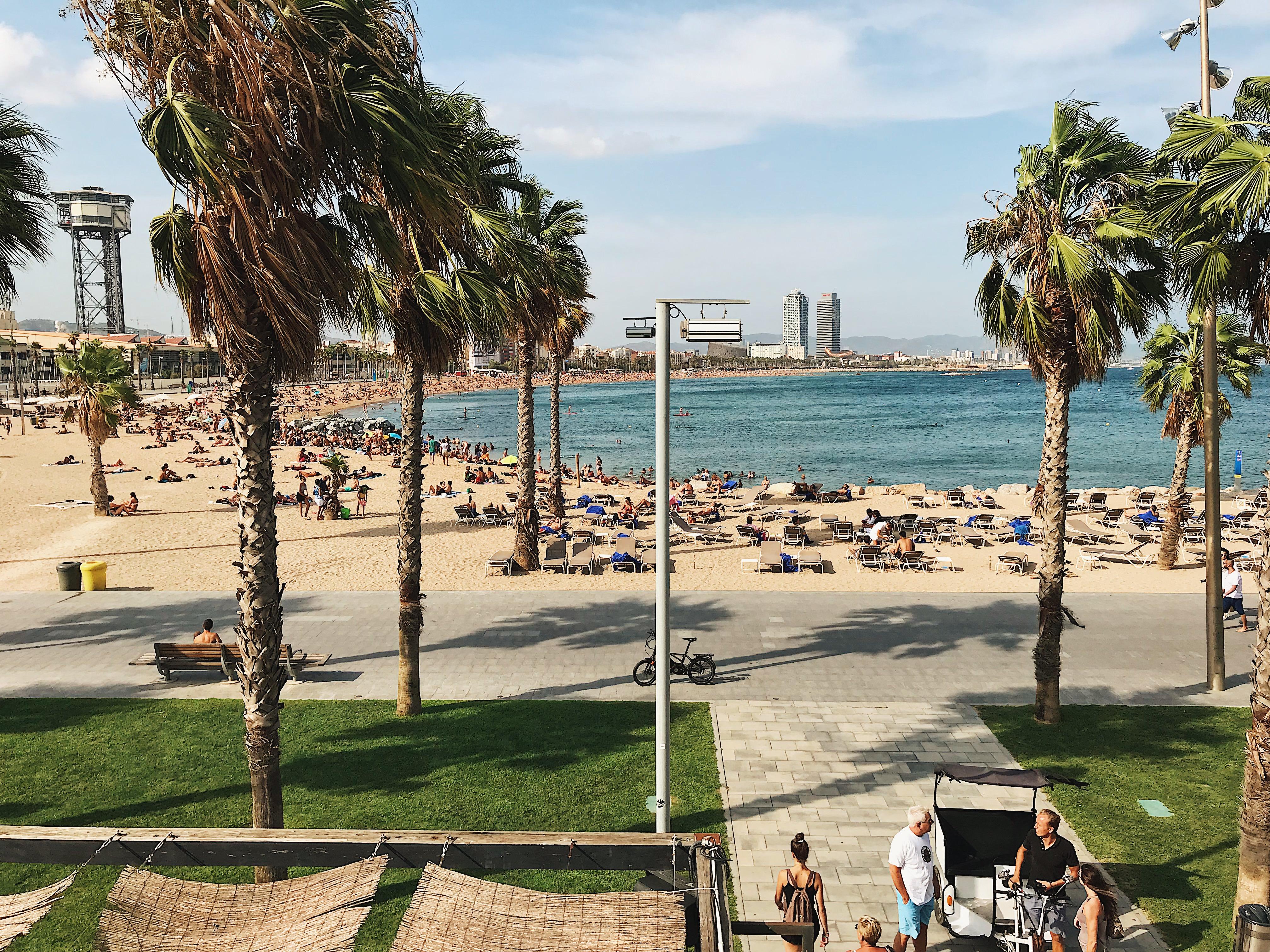 barcelona-beach-w-hotel